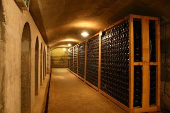 巨峰ワイン地下貯蔵庫